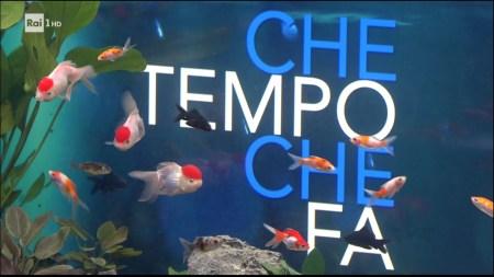 0924_204304_chetempochefa